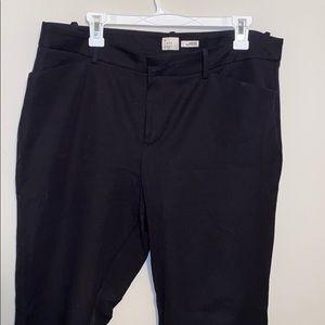 Brand New Ankle Dress Pants